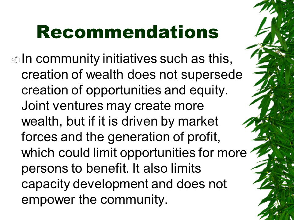 Recommendations  In community initiatives such as this, creation of wealth does not supersede creation of opportunities and equity.