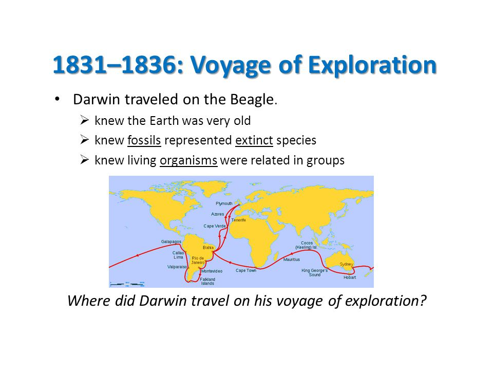 1831–1836: Voyage of Exploration Darwin traveled on the Beagle.  knew the Earth was very old  knew fossils represented extinct species  knew living