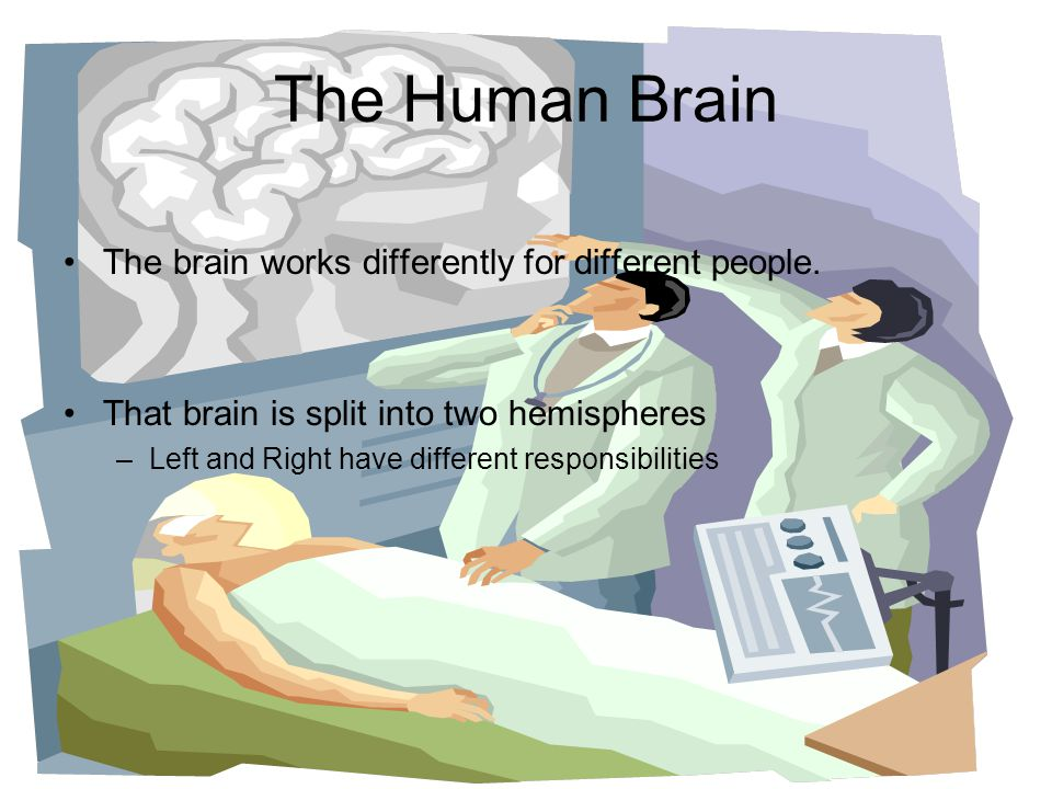 The Human Brain The brain works differently for different people. That brain is split into two hemispheres –Left and Right have different responsibili