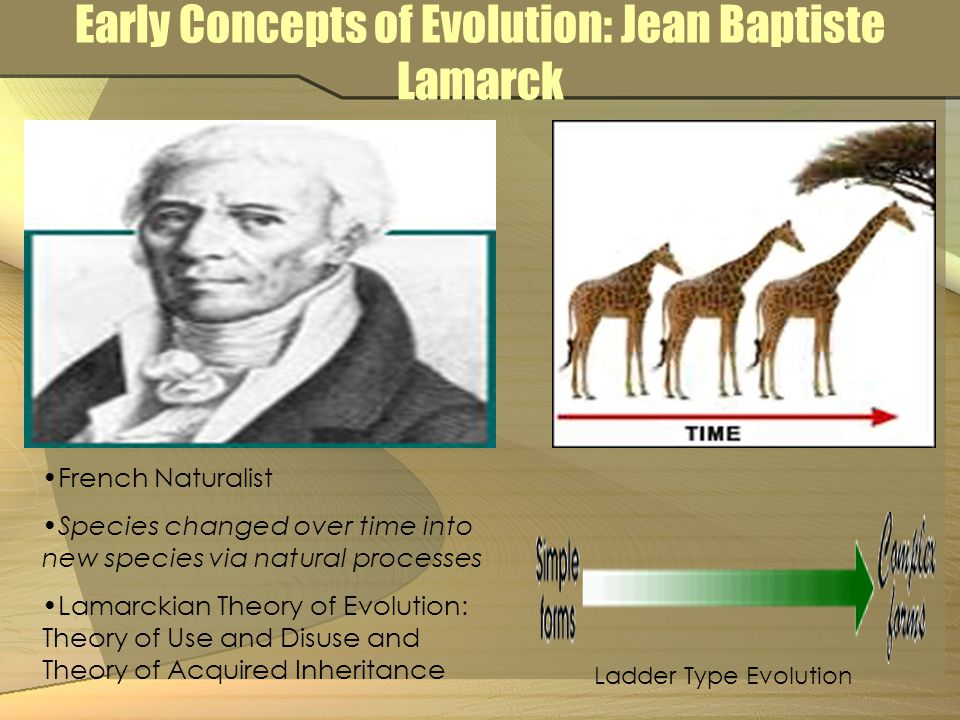 Early Concepts of Evolution: Jean Baptiste Lamarck French Naturalist Species changed over time into new species via natural processes Lamarckian Theory of Evolution: Theory of Use and Disuse and Theory of Acquired Inheritance Ladder Type Evolution