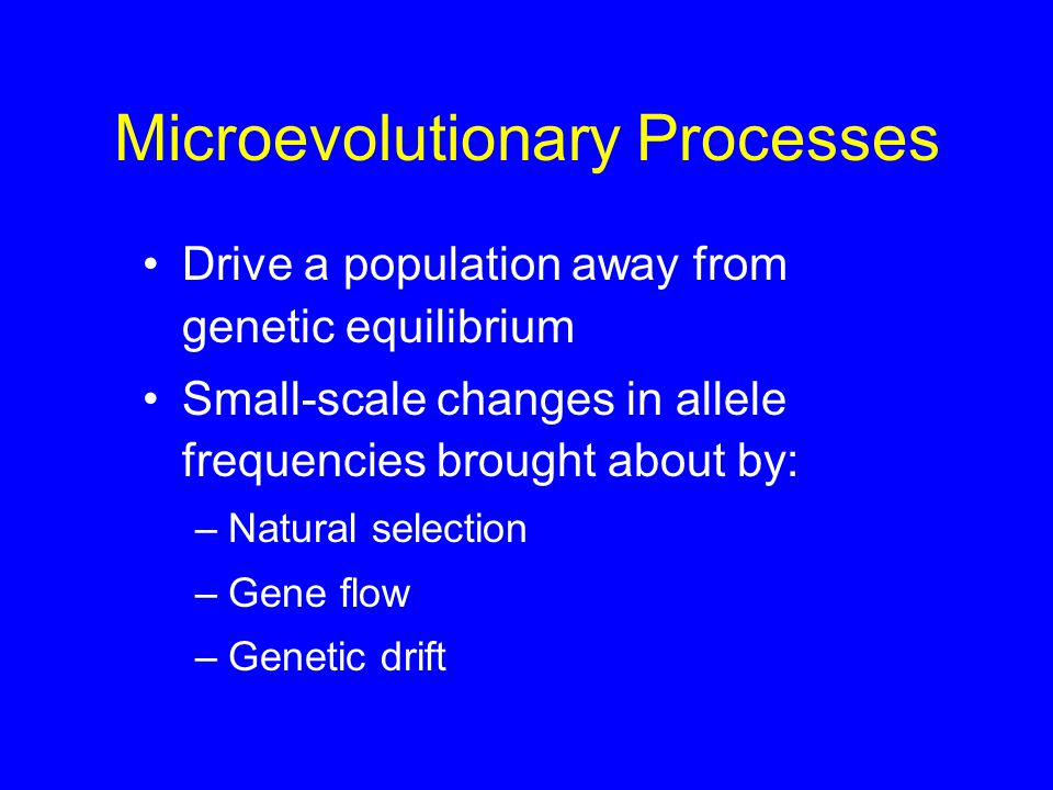 Microevolutionary Processes Drive a population away from genetic equilibrium Small-scale changes in allele frequencies brought about by: –Natural selection –Gene flow –Genetic drift
