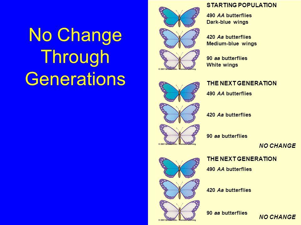 No Change Through Generations STARTING POPULATION 490 AA butterflies Dark-blue wings 420 Aa butterflies Medium-blue wings 90 aa butterflies White wing