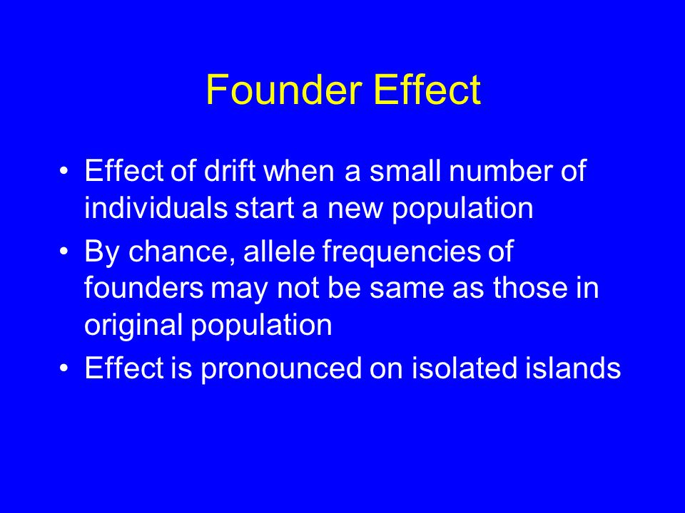 Founder Effect Effect of drift when a small number of individuals start a new population By chance, allele frequencies of founders may not be same as those in original population Effect is pronounced on isolated islands