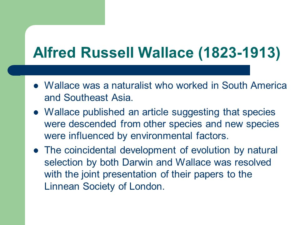 Alfred Russell Wallace (1823-1913) Wallace was a naturalist who worked in South America and Southeast Asia. Wallace published an article suggesting th