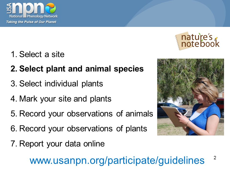 Identifying plants: Internet field guides 23 eNature: www.enature.comwww.enature.com Discover Life: www.discoverlife.orgwww.discoverlife.org WildObs: wildobs.com Arbor Day Foundation: www.arborday.org/trees/whattree www.arborday.org/trees/whattree Wild Flower Center: www.wildflower.orgwww.wildflower.org USDA PLANTS: plants.usda.gov