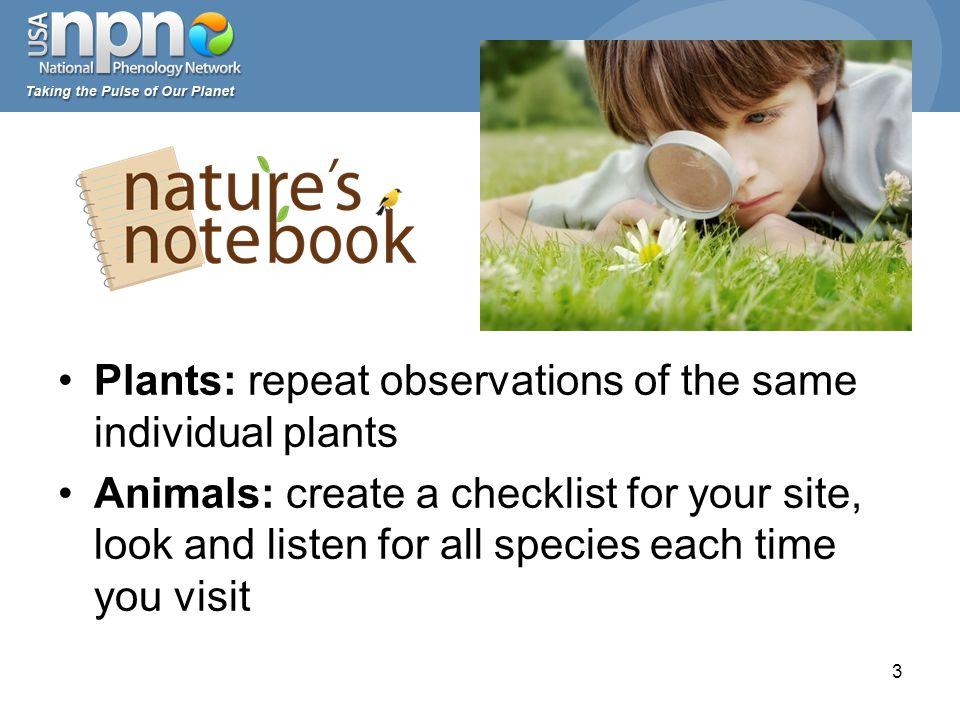 4 www.usanpn.org/species_search