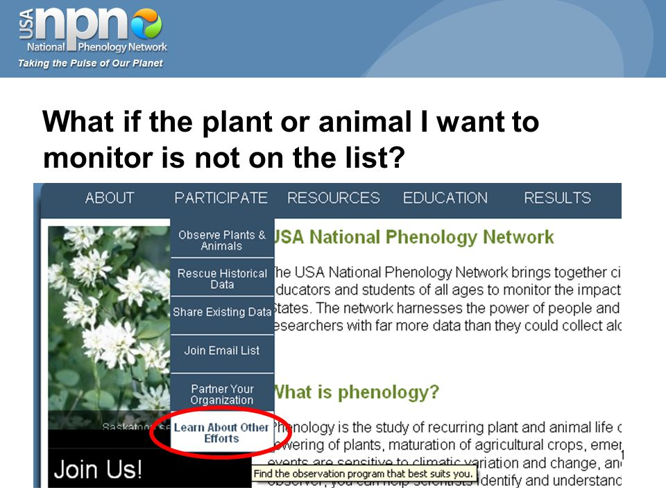31 What if the plant or animal I want to monitor is not on the list?