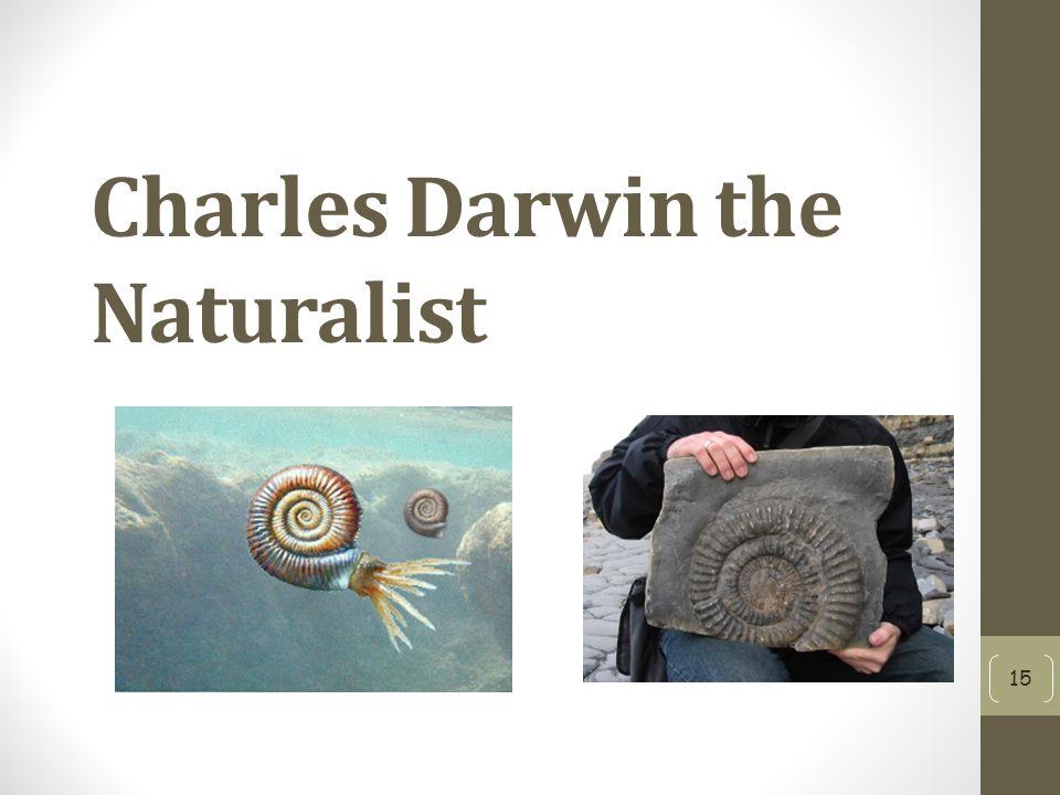 Charles Darwin the Naturalist 15