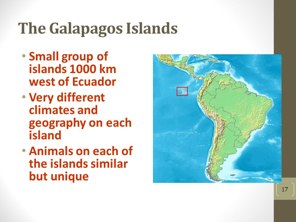 The Galapagos Islands Small group of islands 1000 km west of Ecuador Very different climates and geography on each island Animals on each of the islands similar but unique 17
