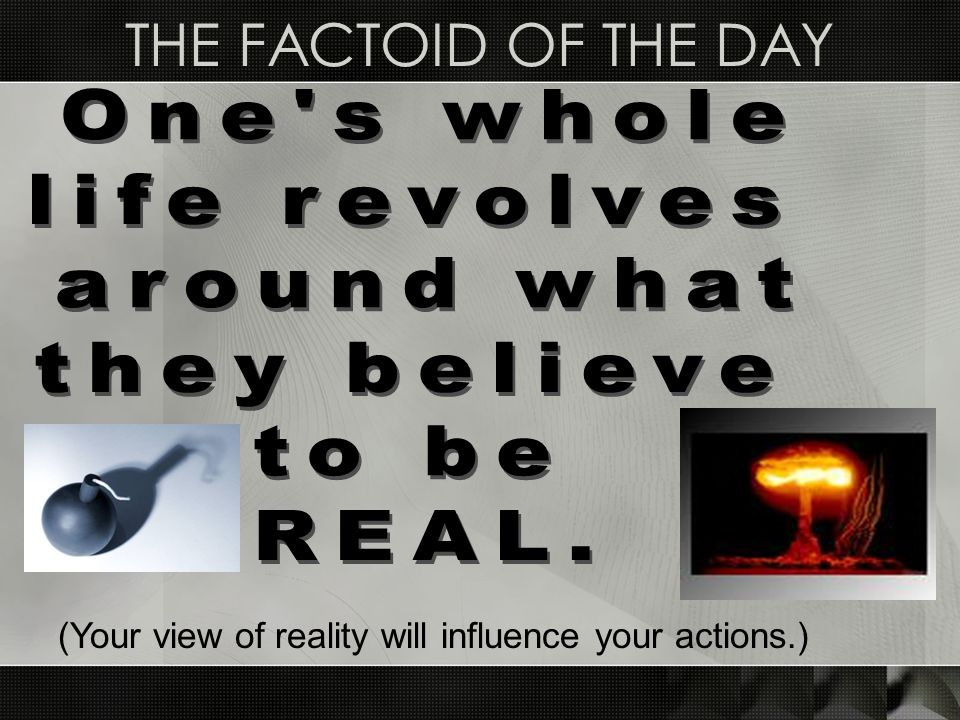 THE FACTOID OF THE DAY (Your view of reality will influence your actions.)