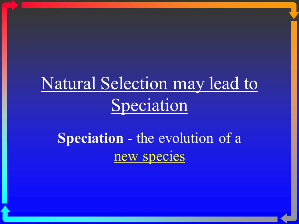 Natural Selection may lead to Speciation Speciation - the evolution of a new species