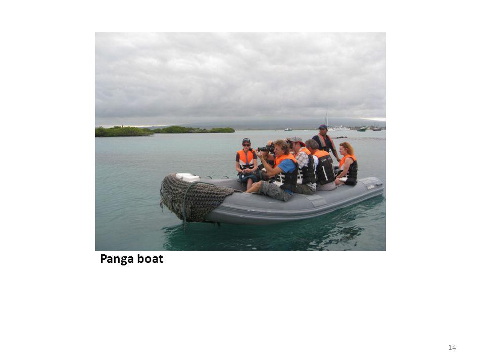 Panga boat 14