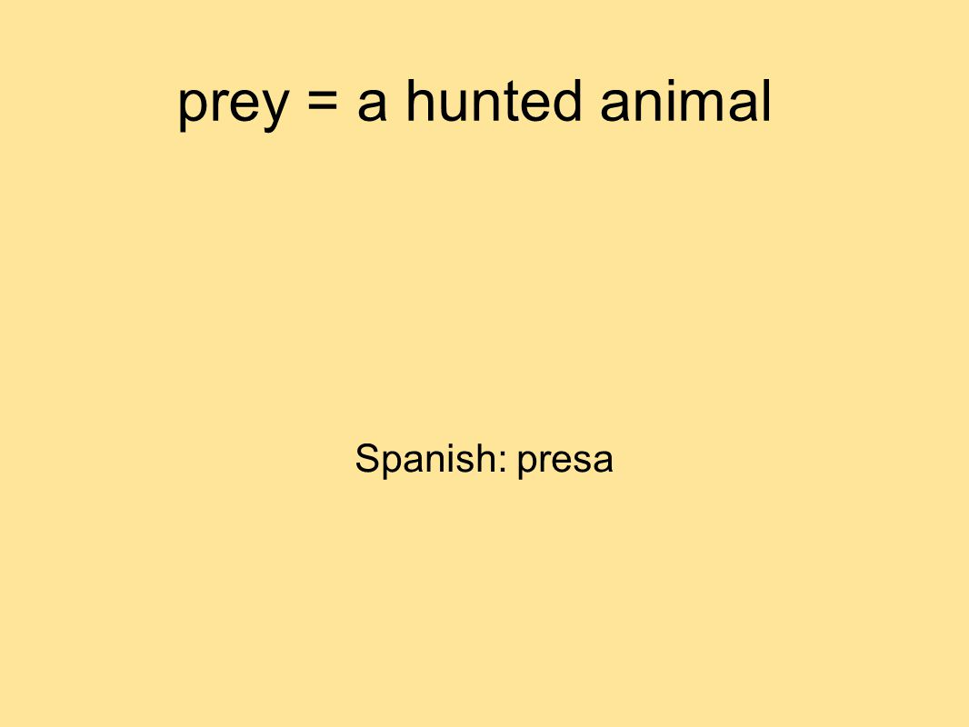 prey = a hunted animal Spanish: presa