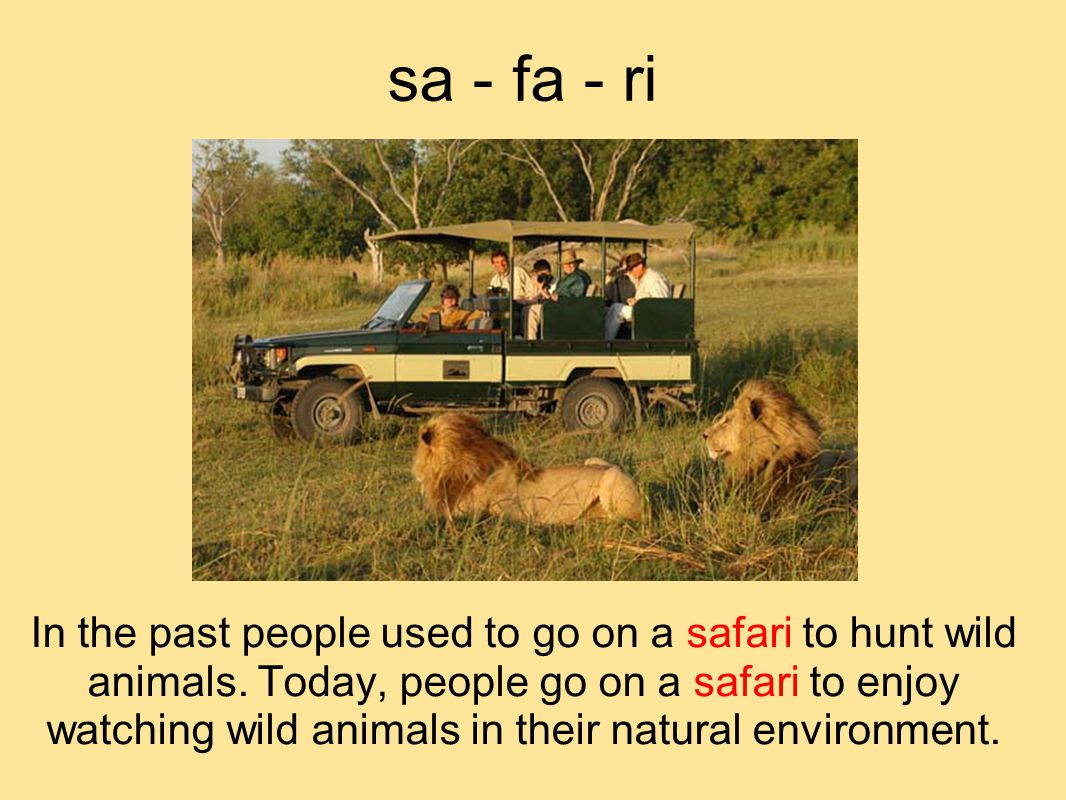 sa - fa - ri In the past people used to go on a safari to hunt wild animals.