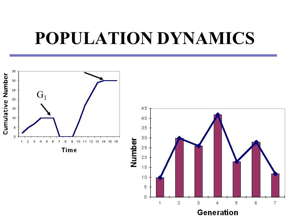 POPULATION DYNAMICS G1G1