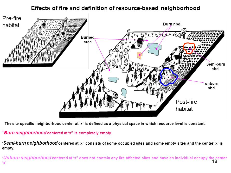 18 Effects of fire and definition of resource-based neighborhood Post-fire habitat Pre-fire habitat Burned area Burn nbd.