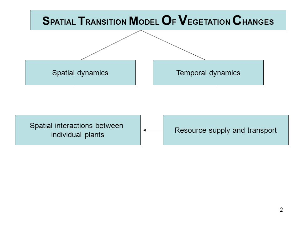 2 S PATIAL T RANSITION M ODEL O F V EGETATION C HANGES Spatial dynamicsTemporal dynamics Spatial interactions between individual plants Resource supply and transport