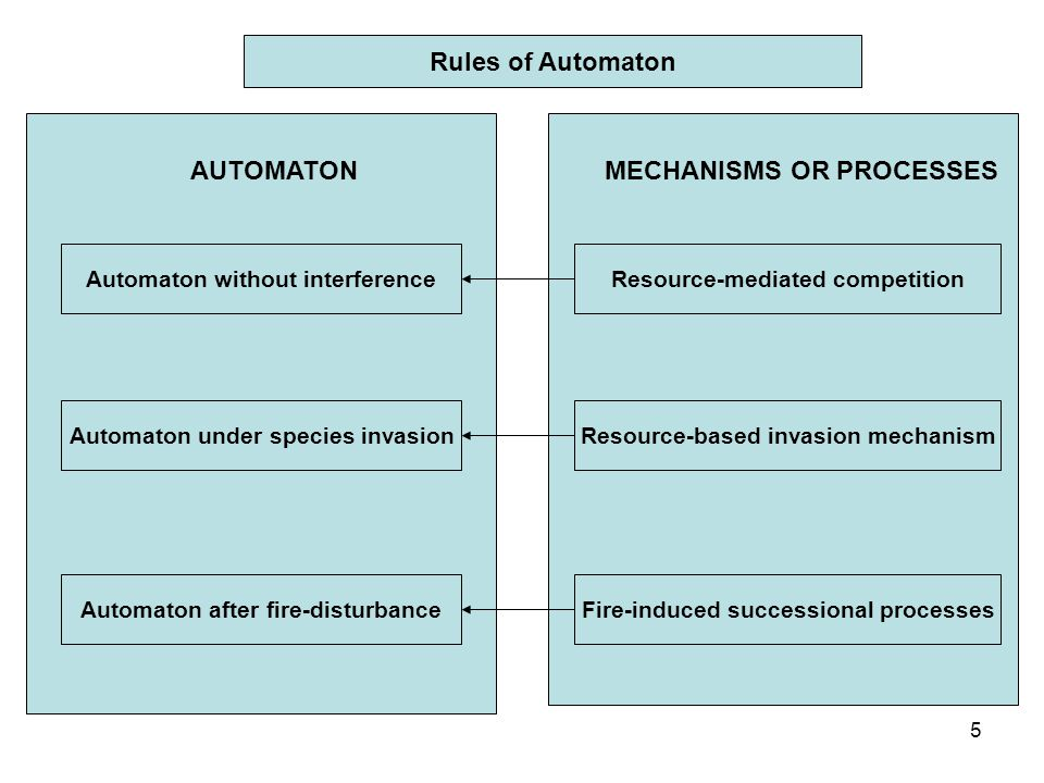 5 Rules of Automaton MECHANISMS OR PROCESSES Automaton without interference Automaton under species invasion Automaton after fire-disturbance AUTOMATON Resource-mediated competition Resource-based invasion mechanism Fire-induced successional processes