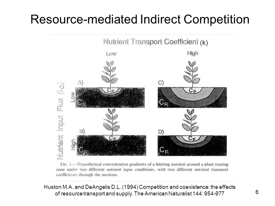 6 Resource-mediated Indirect Competition Huston M.A.