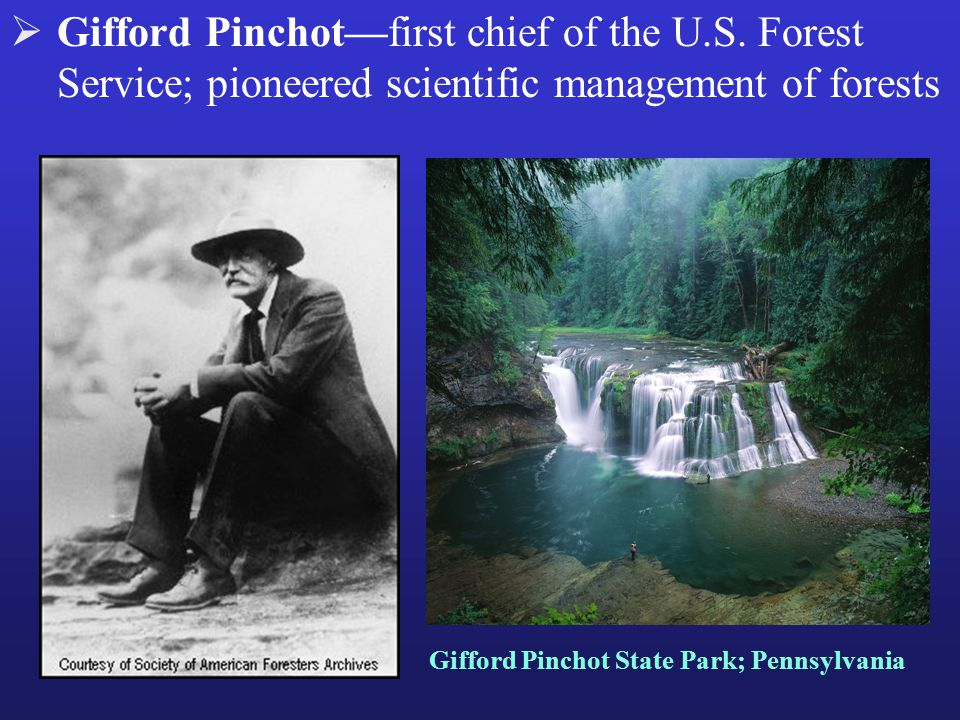 Gifford Pinchot—first chief of the U.S.