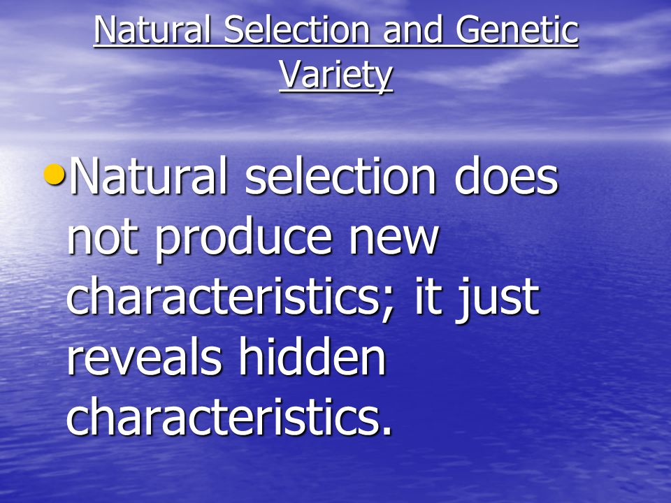 Natural Selection and Genetic Variety Natural selection does not produce new characteristics; it just reveals hidden characteristics.