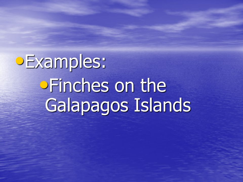 Examples: Examples: Finches on the Galapagos Islands Finches on the Galapagos Islands