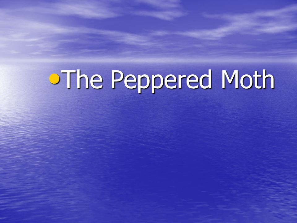 The Peppered Moth The Peppered Moth