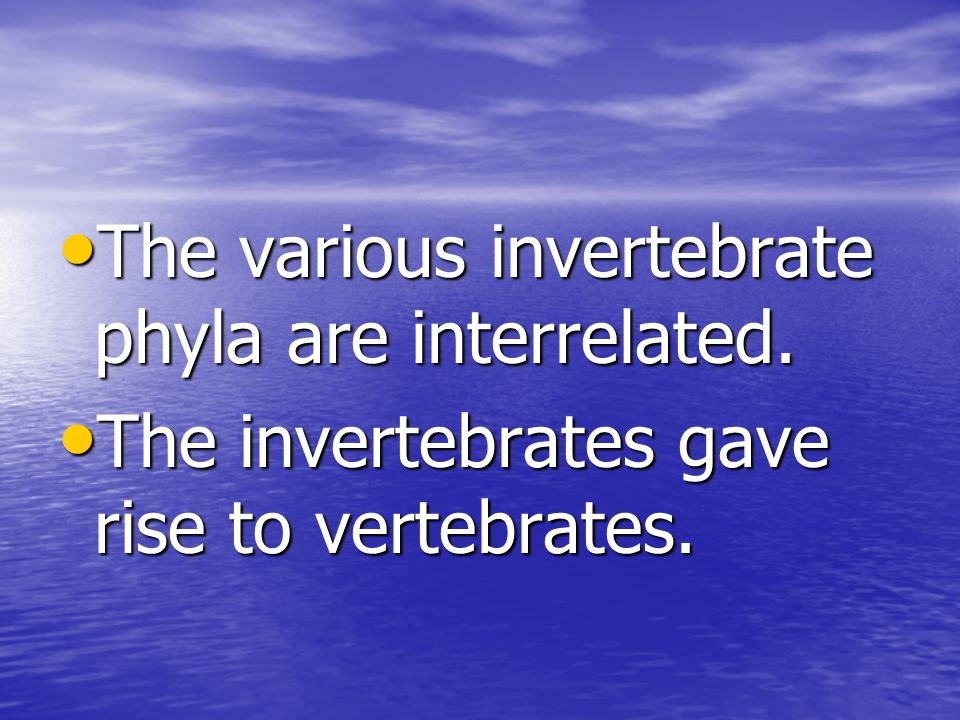 The various invertebrate phyla are interrelated.The various invertebrate phyla are interrelated.