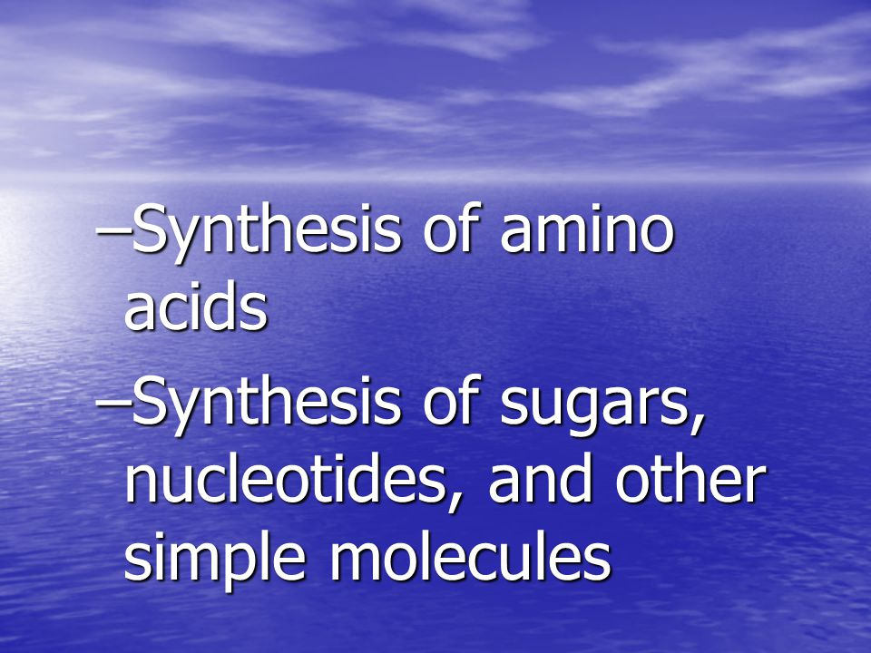 –Synthesis of amino acids –Synthesis of sugars, nucleotides, and other simple molecules