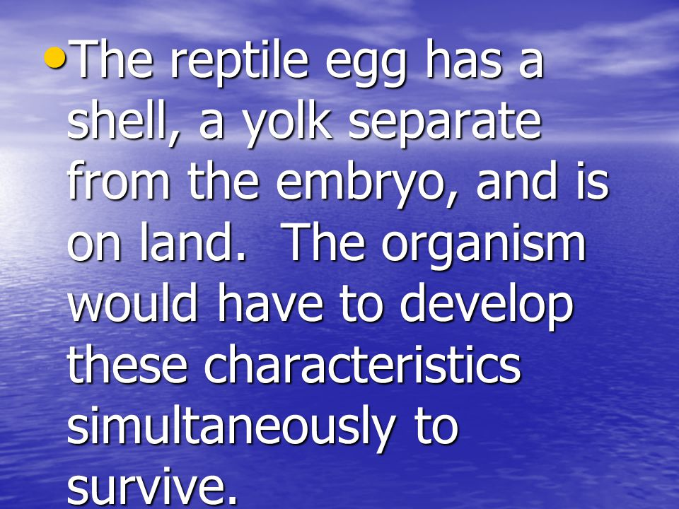 The reptile egg has a shell, a yolk separate from the embryo, and is on land.