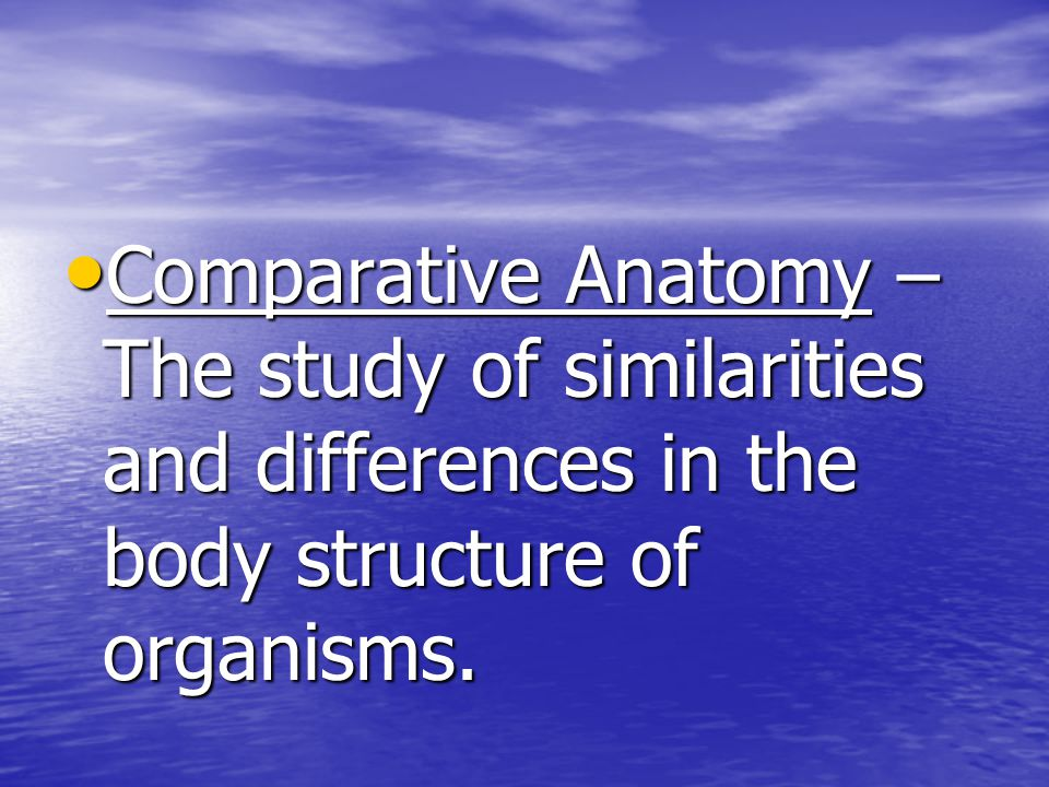 Comparative Anatomy – The study of similarities and differences in the body structure of organisms.
