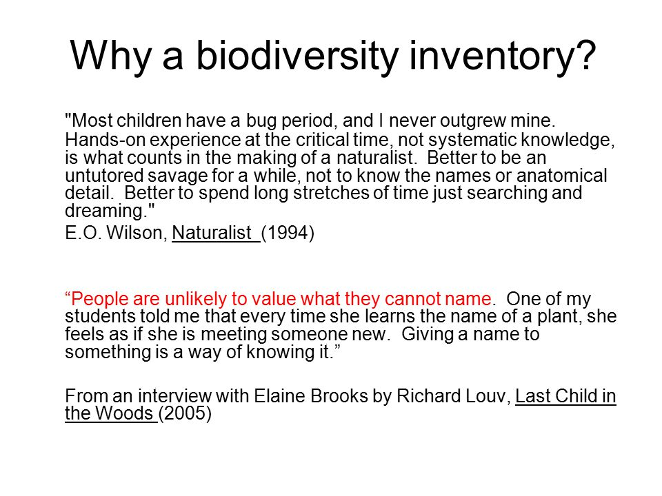 Why a biodiversity inventory. Most children have a bug period, and I never outgrew mine.