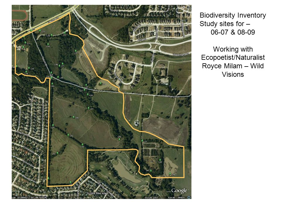Biodiversity Inventory Study sites for – 06-07 & 08-09 Working with Ecopoetist/Naturalist Royce Milam – Wild Visions