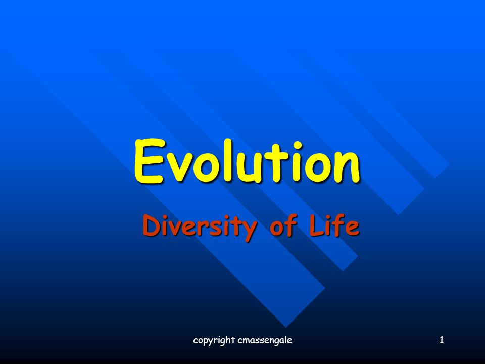 1 Evolution Diversity of Life copyright cmassengale