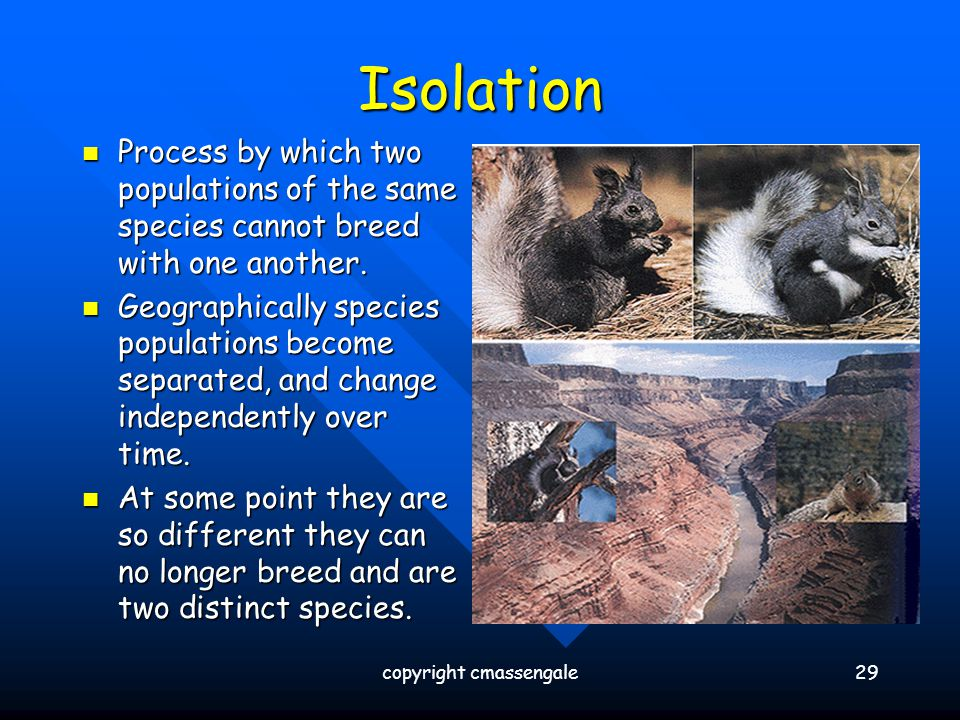 Isolation Process by which two populations of the same species cannot breed with one another. Process by which two populations of the same species can