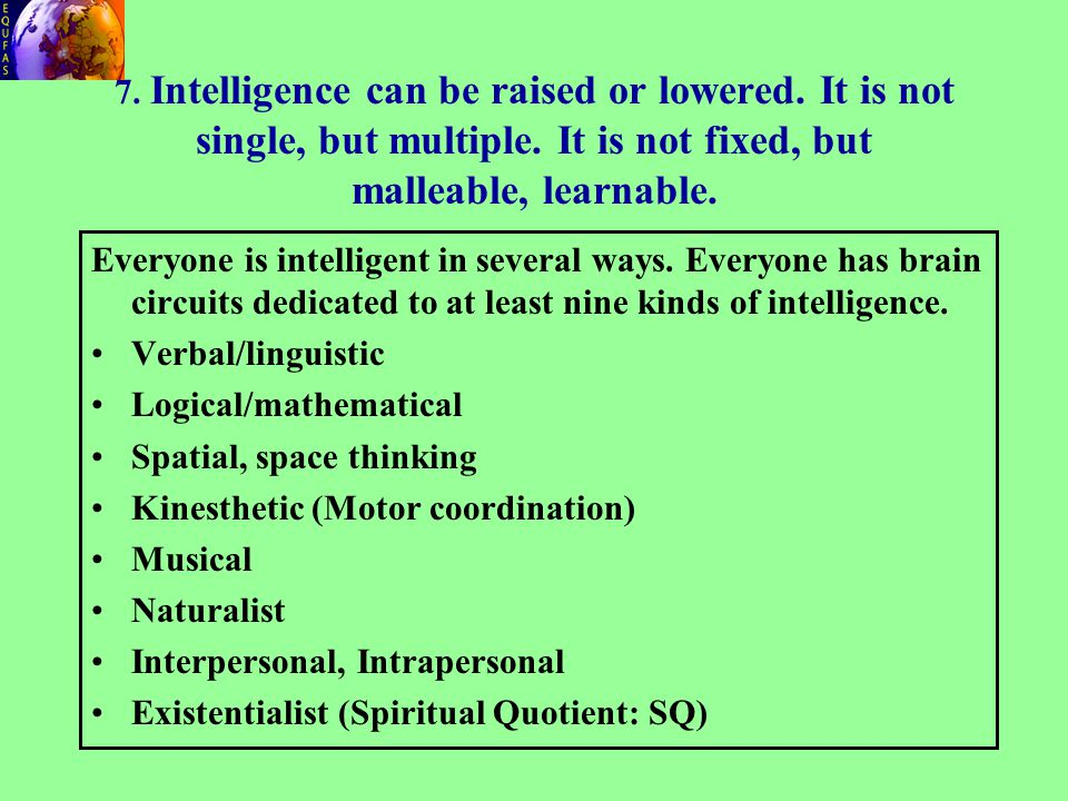 Everyone is intelligent in several ways. Everyone has brain circuits dedicated to at least nine kinds of intelligence. Verbal/linguistic Logical/mathe