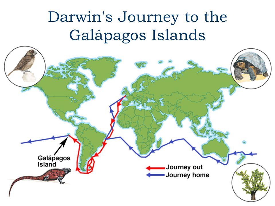 Darwin's Journey to the Galápagos Islands