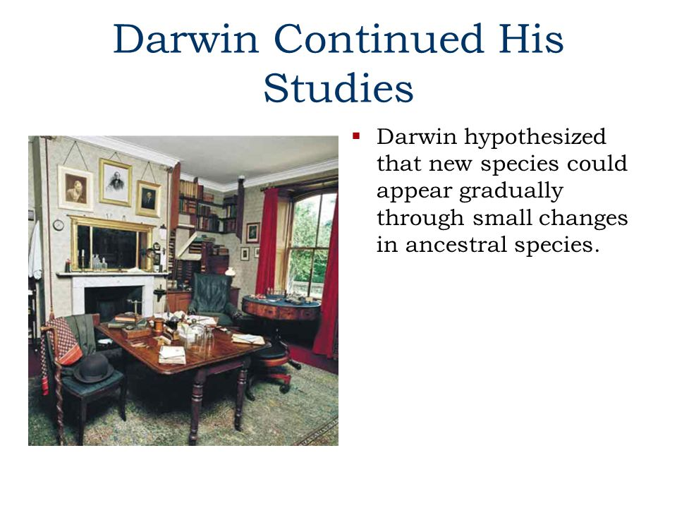 Darwin Continued His Studies  Darwin hypothesized that new species could appear gradually through small changes in ancestral species.
