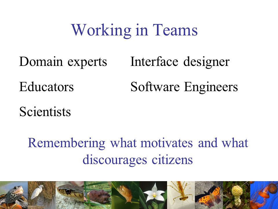 Working in Teams Remembering what motivates and what discourages citizens Domain experts Interface designer EducatorsSoftware Engineers Scientists
