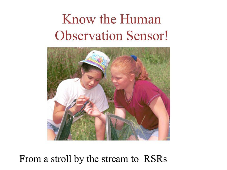Know the Human Observation Sensor! From a stroll by the stream to RSRs