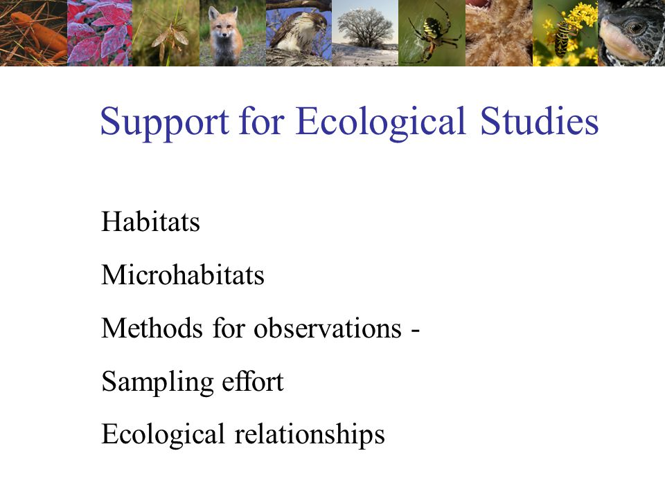 Support for Ecological Studies Habitats Microhabitats Methods for observations - Sampling effort Ecological relationships