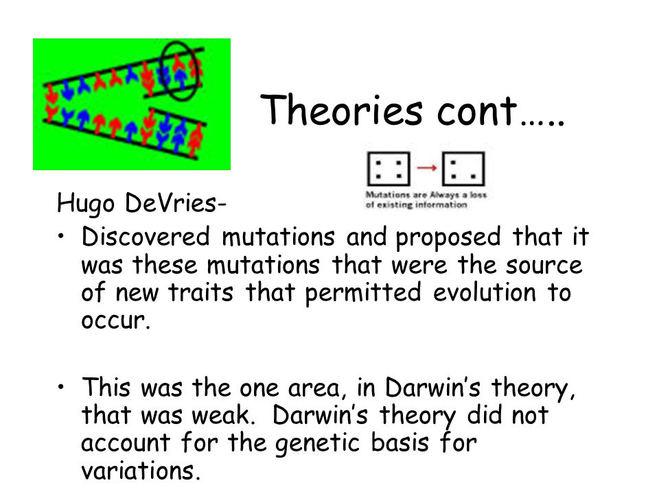Theories cont….