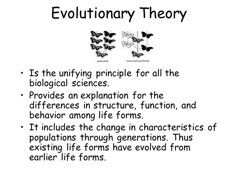 Definition of Evolution Evolution is the process of change through time.