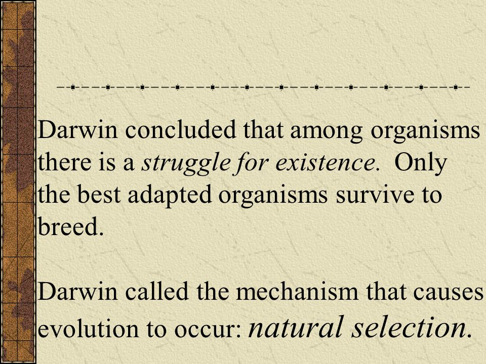 Darwin concluded that among organisms there is a struggle for existence.