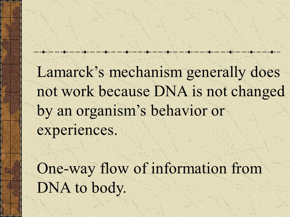 Lamarck's mechanism generally does not work because DNA is not changed by an organism's behavior or experiences.