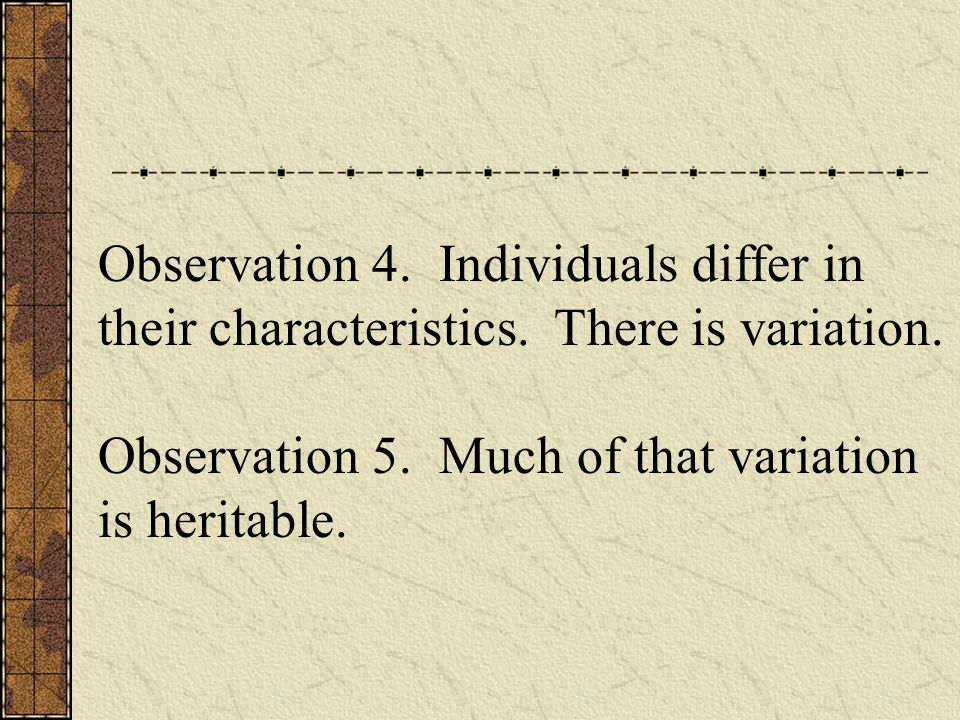 Observation 4. Individuals differ in their characteristics.