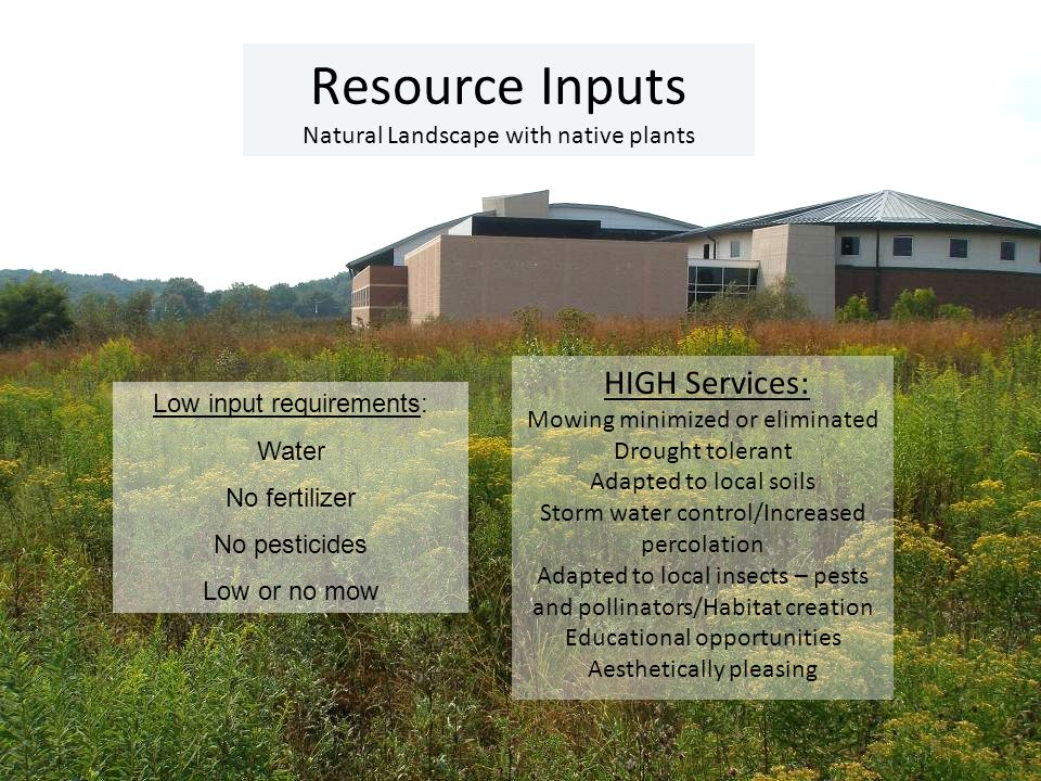 Resource Inputs Natural Landscape with native plants HIGH Services: Mowing minimized or eliminated Drought tolerant Adapted to local soils Storm water control/Increased percolation Adapted to local insects – pests and pollinators/Habitat creation Educational opportunities Aesthetically pleasing Low input requirements: Water No fertilizer No pesticides Low or no mow
