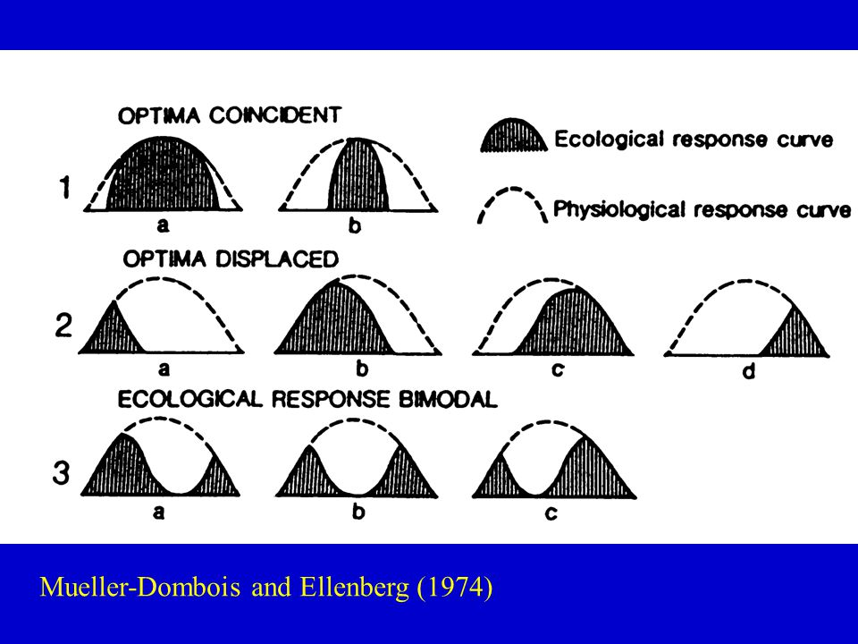 Mueller-Dombois and Ellenberg (1974)