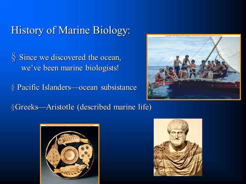 History of Marine Biology: § Since we discovered the ocean, we've been marine biologists.