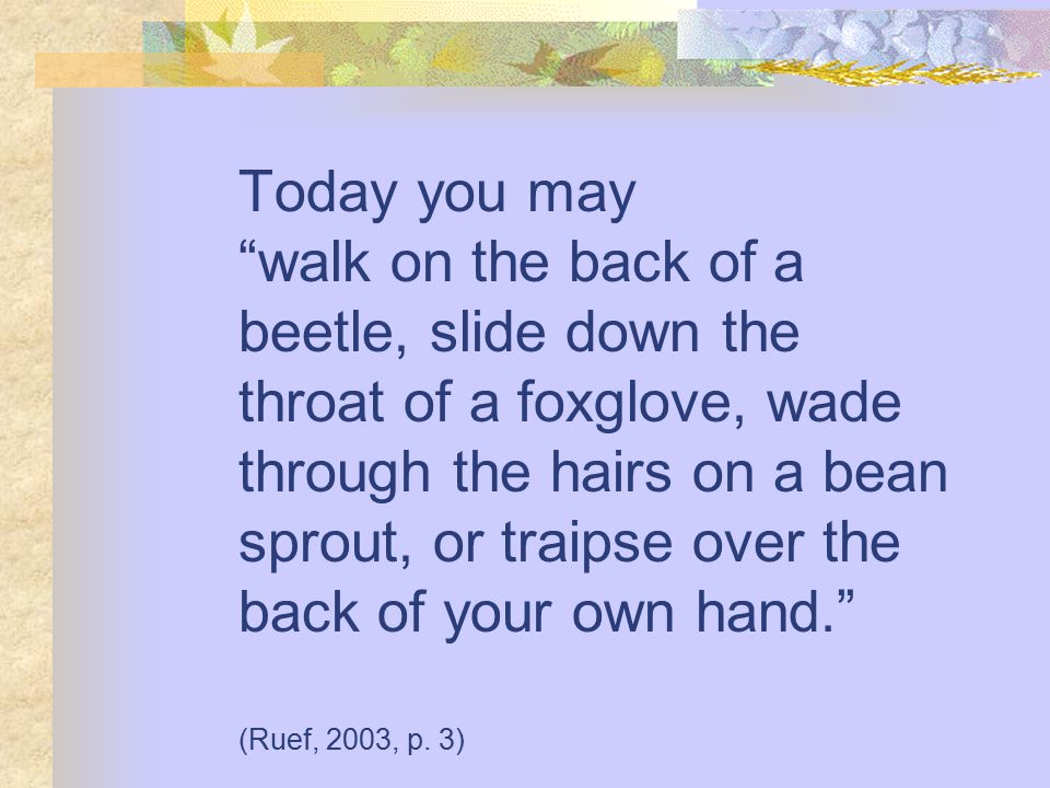 Today you may walk on the back of a beetle, slide down the throat of a foxglove, wade through the hairs on a bean sprout, or traipse over the back of your own hand. (Ruef, 2003, p.